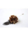 Flower and Feather Lapel Pin - Taupe Dahlia Flower and Grey Helmeted Guineafowl feather
