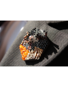 Buenos Aires - Lapel Pin Embroidered brooch haute-couture for Stylish Men